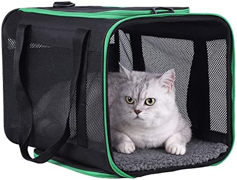 petisfam Large Cat Carrier for Large and Medium Cats and Small Dogs Offers a Comfy and Safe product image