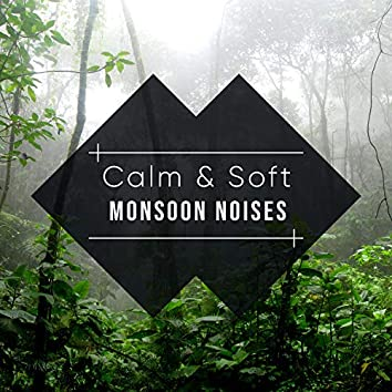 #18 Calm & Soft Monsoon Noises for Relaxation