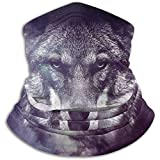 Duang Face Scarf Galaxy Wolf Face Adulte Multifonctionnel Neck Warmer Neck Gaiter Tube Léger Camping Hiver Coupe-Vent Neck Gaiter Warmer Neck Gaiter Bandanas Snowboard Extensible