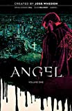 Angel Vol. 1 20th Anniversary Edition (1)