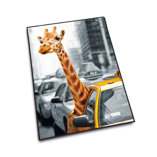 Herding 645943013 Teppich New York Safari, 80 x 120 cm