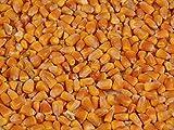 Bio Mais, im 10 kg Sack aus eigener Ernte
