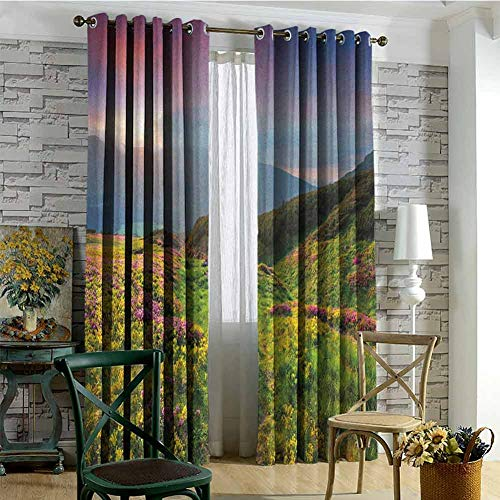 Price comparison product image Nature Blackout curtains - gasket insulation Summer Season Scene with Fresh Flowers Green Foliage Mountain Landscape Ukraine Blackout curtains for the living room W84 x L84 Inch Pink Green Blue