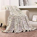 FY FIBER HOUSE Flannel Fleece Throw Blanket, Lightweight Cozy Plush Microfiber Bedspreads for Adults,90 by 90-Inch,Brown Zebra