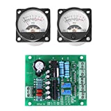 2Pcs VU Meter Warm Back Light Recording + Audio Level Amp with Driver Board