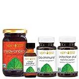 Healthy Lungs Set (Chyawanprash, Protection Plus Respiratory, Bio-Immune, Clear Breathe)