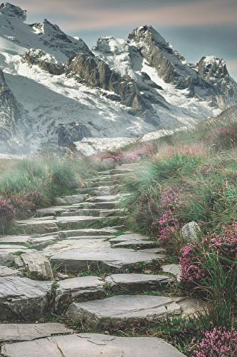 Kletter Tagebuch: Das Tagebuch zum selber ausfüllen für alle Kletterer und Boulderer ♦ Routentagebuch für die schönsten Klettersteige, Routen und ... ♦ A4+ Format ♦ Motiv: Steintreppe