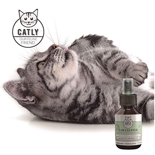 Catly Limpiador del oído para el Gato | Bio-Aerosol de Hamamelis 100Ml | Champú seco Alternativa