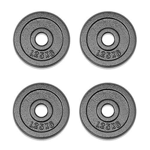Xn8 Weight Plates Pairs 11lbs & 22lbs Sets Cast Iron Plate Bumper Grip Plates Barbell for Home Gym Workout