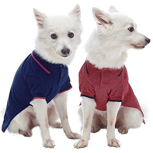 Blueberry Pet 7 Colors Pack of 2 Back to Basic Cotton Blend Dog Polo Shirts