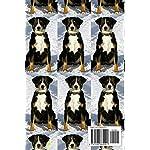 Appenzeller Sennenhunde Lovers Calendar 2019-2020 4