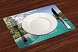 Manteles Individuales, Decoración de la casa, vista panorámica de las islas Seychelles de,Mantel Individual Antideslizante Lavable Resistente Al Calor para Hoteles Restaurante Catering (Paquete de 4)