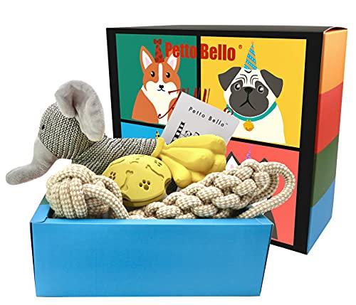 Petto Bello Geschenkbox mit 5-teiligem Set aus Hundespielzeug, Kauspielzeug, Leckerli-Spender für Hunde-Zahnpflege und Quietschspielzeug für Welpen/kleine, mittlere sowie große Hunde,Geschenk für Hund