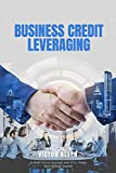 Business Credit Leveraging (English Edition)