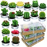 GIFTEXPRESS 18 Pcs Succulent Cactus Candles No Repeat Style, Delicate Smokeless Scented Tealight Candles for Home Décor, SPA, Wedding, Valentine's Day, Birthday Gift, Anniversary Celebration