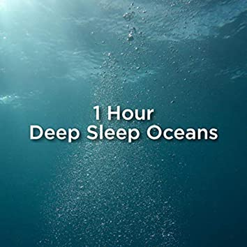 1 Hour Deep Sleep Ocean Sounds