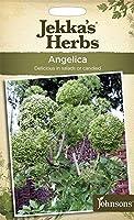 【輸入種子】 Johnsons Seeds Jekka's Herbs Angelica ジェッカズ・ハーブス アンジェリカ ジョンソンズシード