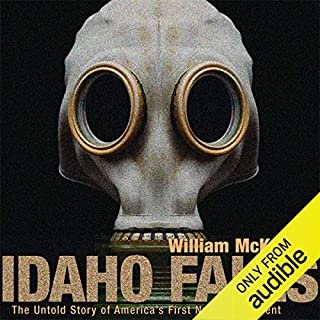 Idaho Falls audiobook cover art