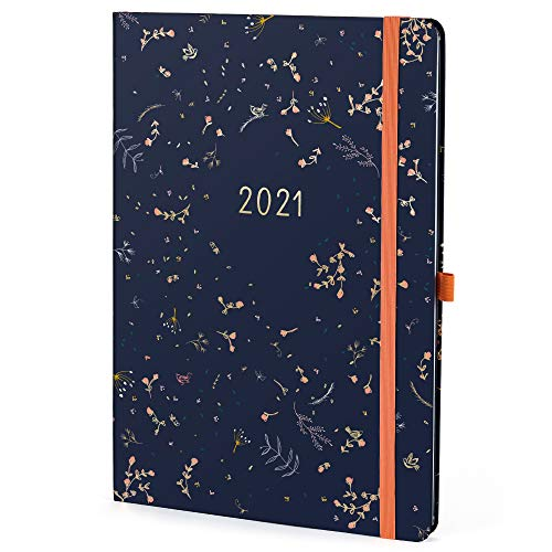Boxclever Press Everyday 2021 Diary A4. New for 2021! Stunning Weekly...