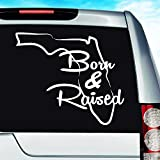 Car Decal Geek Florida Born and Raised Vinyl Decal Sticker Bumper Cling for Car Truck Window Laptop MacBook Wall Cooler Tumbler | Die-Cut/No Background | Multi Sizes/Colors Pink, 8'