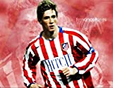Fernando Torres Poster auf