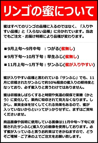 山形県産りんご2kg(ご家庭用/準秀品/6玉-9玉入り)