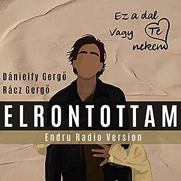 Elrontottam (Endru Radio Version)