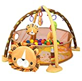 Baby Cartoon Toys Activity Gym Play Mat & Ball Pit Infant Floor Gym