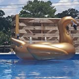 Flotador Cisne elegante color Dorado hinchable