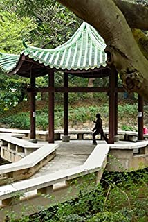 Posterazzi Tai Chi Chuan in the Chinese Garden Pavilion at Kowloon Park Hong Kong China Poster Print by Charles Crust (23 x 35)
