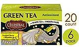 Celestial Seasonings Antioxidant Green Tea, 20 ct [Pack of 6]
