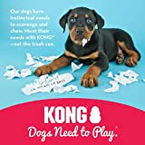Kong Hundespielzeug L, 10,5 cm rot - 5