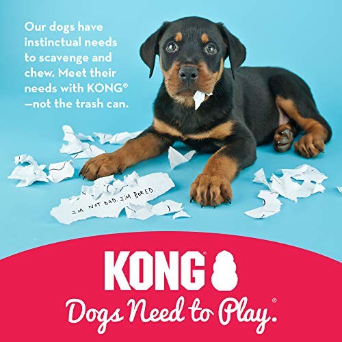 Product Image 5: KONG – Classic Dog Toy