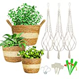 Greenstell Hanging Planters with Seagrass Planter Basket - Set of 3 Hand Woven Hanging Planter Basket Indoor Outdoor Plant Hangers and Flower Pots Cover Containers for Home Decor (Seagrass White)