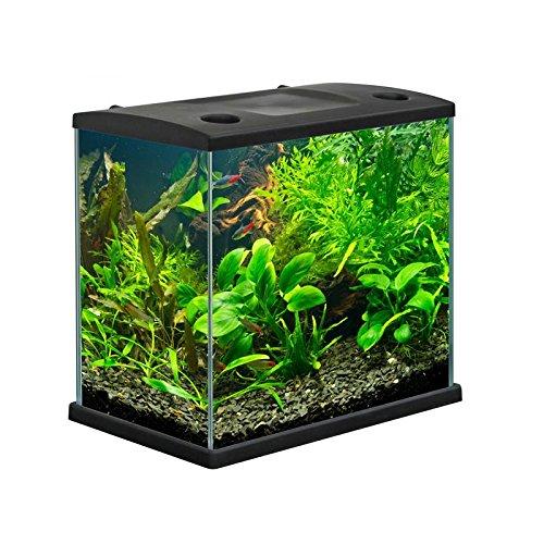 Acquario CLEO in vetro colore Nero per pesci rossi completo 22 LT
