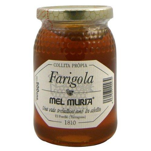 MIEL TOMILLO 500GR MURIA
