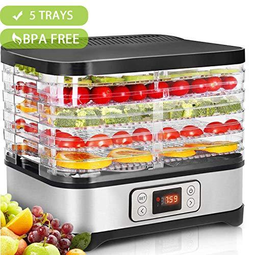 Hopekings Déshydrateur Alimentaire 250W avec Thermostat Réglable, Déshydrateur de Fruits 5 Plateaux, INOX Gris
