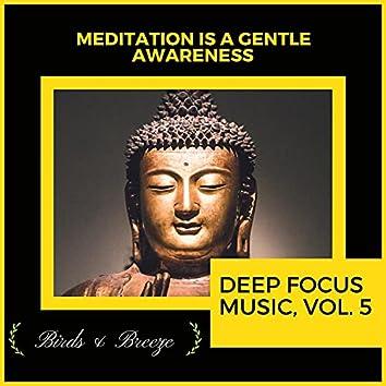 Meditation Is A Gentle Awareness - Deep Focus Music, Vol. 5