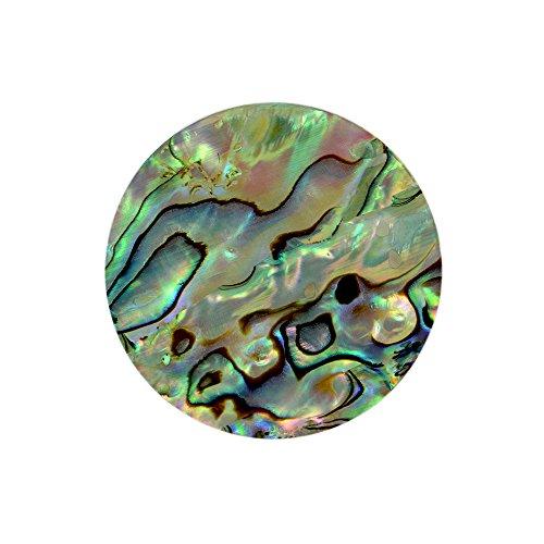 Quiges Natürliche Muschel Large Coin 33mm Abalone Grün für austauschbare Anhänger Münzfassung Halskette