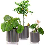 Large Metal Plant Stand Flower Pots Set of 3 for Planters Modern Garden Planter Holders Indoor Stand with Pots, Outdoor White or Black Iron Flower Pots with Golden Wire Frame for Home Decor(Dark Grey)
