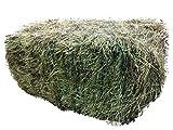 Heu-Heinrich® 7-8kg Bio-Kräuterheu-Quaderballen- Heu für Nager Kaninchen Meerschweinchen Pferde