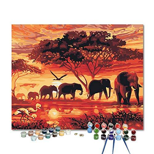 Pintar por numeros para Adultos Safari de Elefantes - Pintur