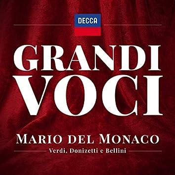 Grandi Voci – Mario del Monaco canta Verdi, Donizetti e Bellini- Una collana con registrazioni originali Decca e Deutsche Grammophon rimasterizzate con le tecniche più moderne che ne garantiscono eccellenza tecnica e artistica.