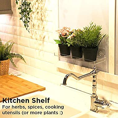 Urban Leaf - Suction Cup Shelf for Plants Window Bathroom or Kitchen | Live Plant Shelves for Indoor Garden | Window Sill, Sh