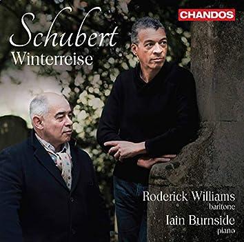 Schubert: Winterreise, Op. 89, D. 911