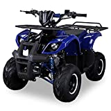 Kinder Quad S-8 Farmer 125 cc Motor Miniquad 125 ccm
