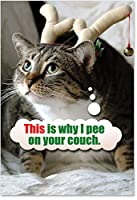 Pee On CouchクリスマスFunnyカード 12 Christmas Card Pack (SKU:B1130)