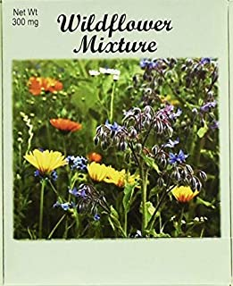 Set of 50 Flower Seed Packets! Flower Seeds in Bulk (50, Wildflower Mixture)