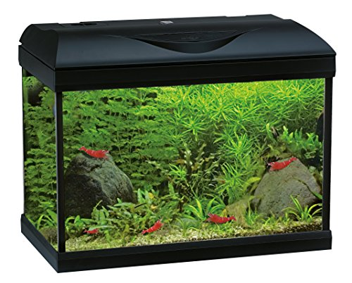 Wave A2001628, Aquarium Riviera 40 LED Coldwater, zwart