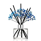 Cocod'or Preserved Real Flower Reed Diffuser/Pure Cotton / 6.7oz(200ml) / 1 Pack/Reed Diff...